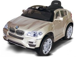 Painted BMW X6 Leather + chair + pilot PA056M
