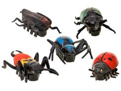 Realistic INSECTS spider beetle beetle ZA0890