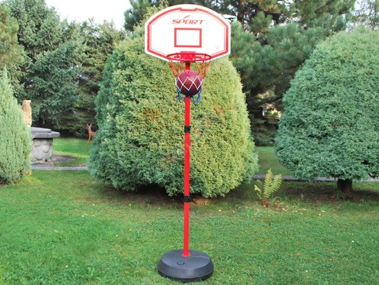 Plaque to the Trash basketball & football pump SP0283