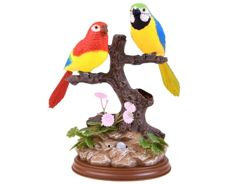 Chirping parrots on the tree Birds ZA2467