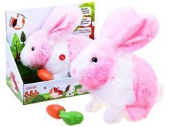 Interactive pet Rabbit guinea pig ZA2685