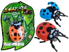 Insect Plastic BIEDRONKA on wheels ZA2060