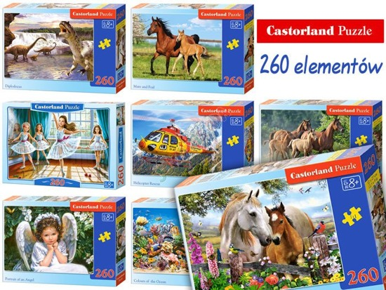 Castorland beautiful Puzzles 260 items CA0009