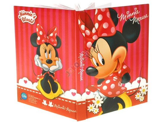 Diary of Minnie Mouse stickers pens ZA0948